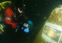 Sukeldumisajakirjanik Susanne Lundvall loeb veealust infotahvlit Hanko sukeldumispargis Soomes. Foto autor Will Appleyard.