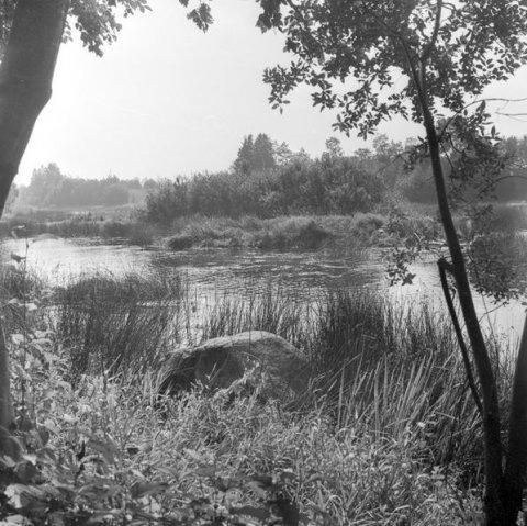 Hiiesaar Pärnu jões, 1976. Foto: A. Sillasoo, kultuurimälestiste register