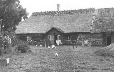Tika talu rehielamu, foto Riina Pau 1984