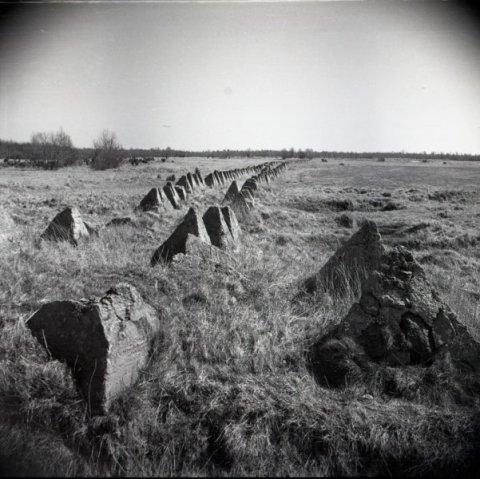 Kaimri-Lõpe tankitõrjeliin, SM F 3012:22 Fn, Saaremaa Muuseum SA. Foto: Tõnu Grepp