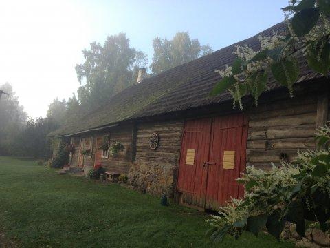 Hoone Viljandimaal, puitkatus.